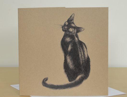Black Cat lucky card
