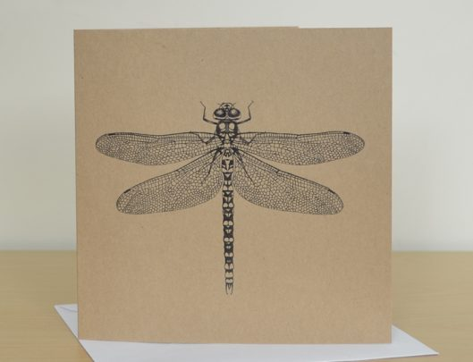 dragonfly recycled card